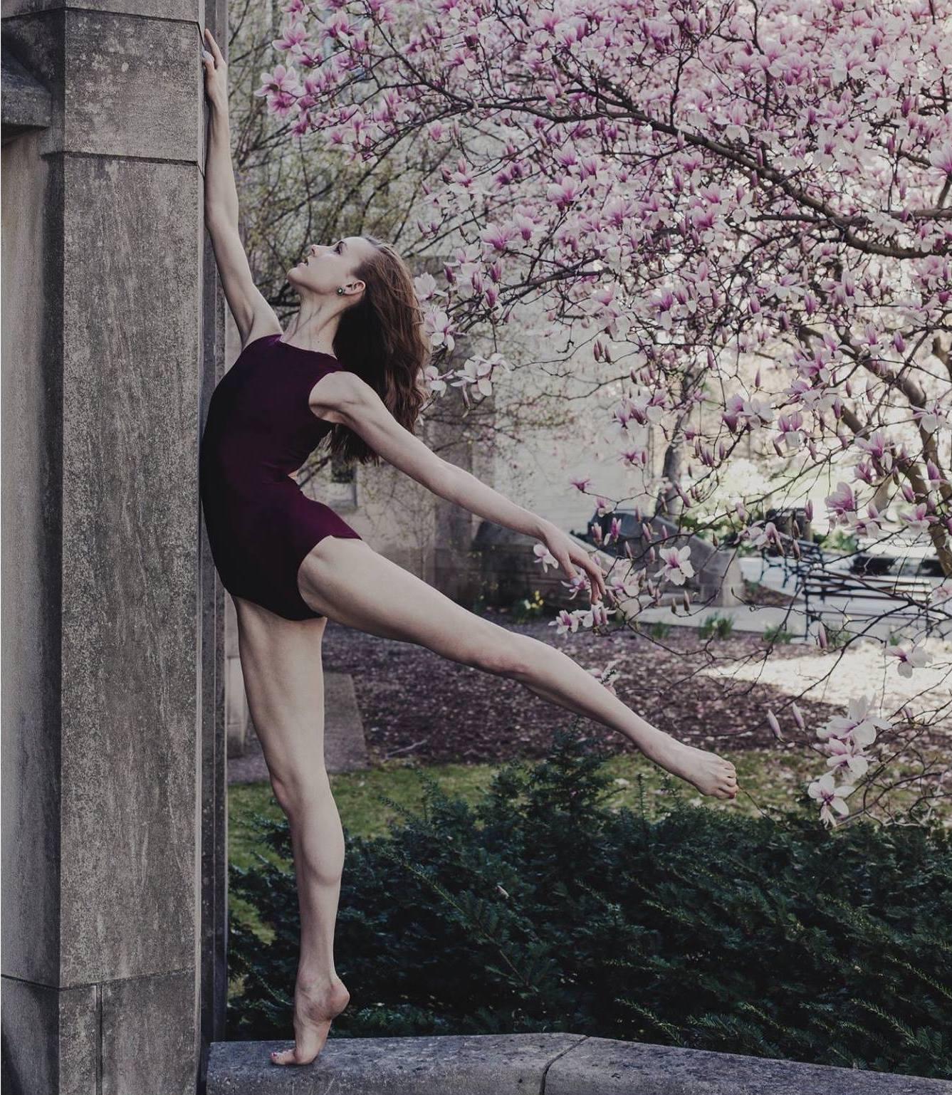 Taylor Carlson